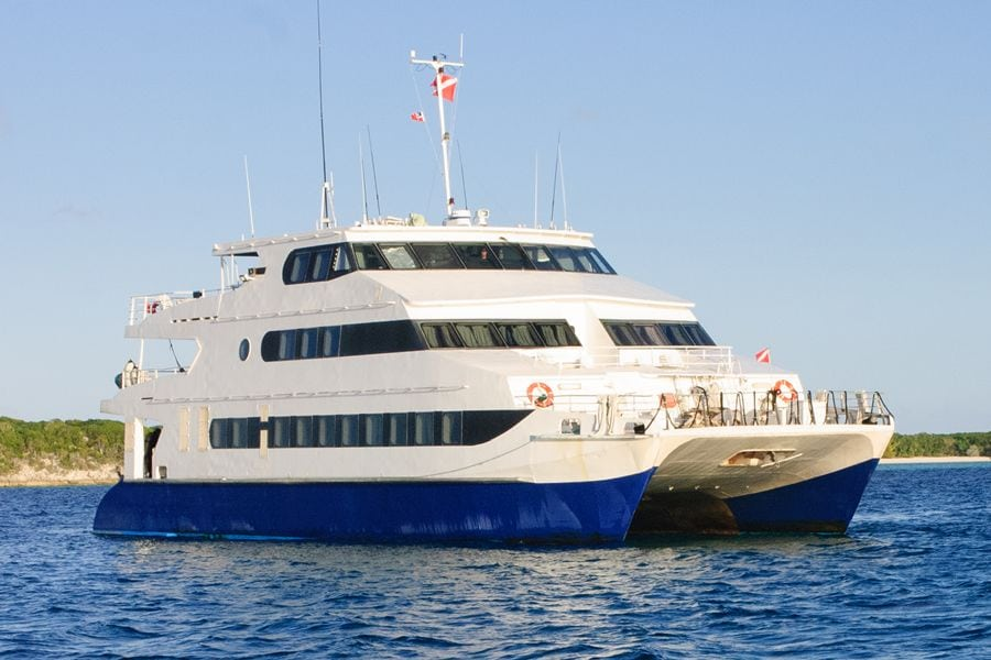 Bahamas Dive Liveaboard Aqua Cat. The Aqua Cat is the most luxurious dive liveaboard in the Caribbean.