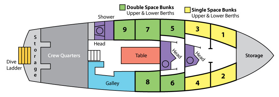 Vessel layout of Blackbeard's dive liveaboard in the Bahamas