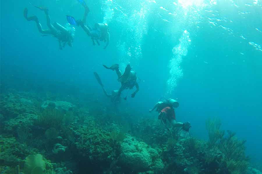 divers aboard Blackbeard's Bahamas liveaboard