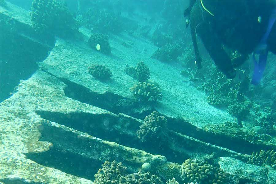 Divers can enjoy a number of different experiences while diving in The Philippines