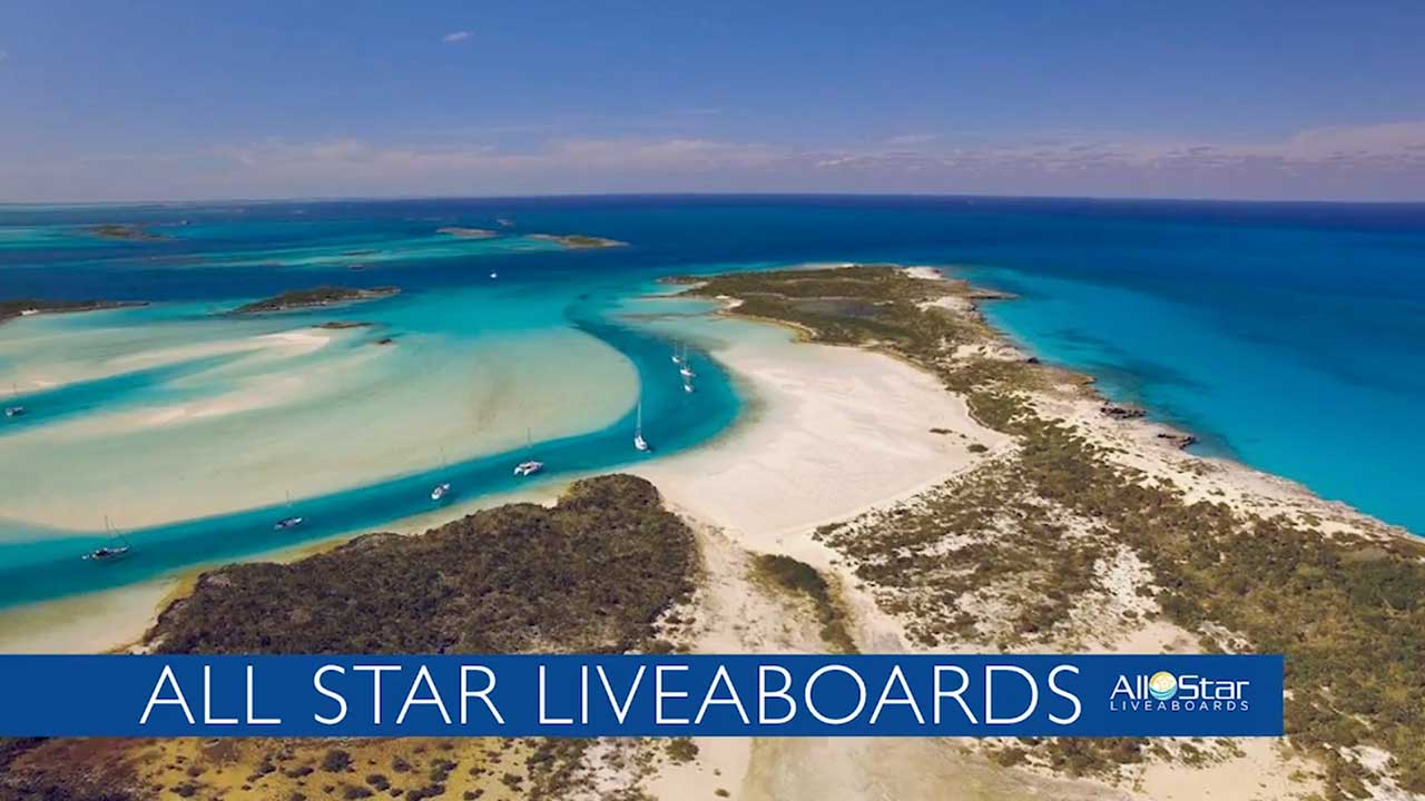 All Star Liveaboards Official Video