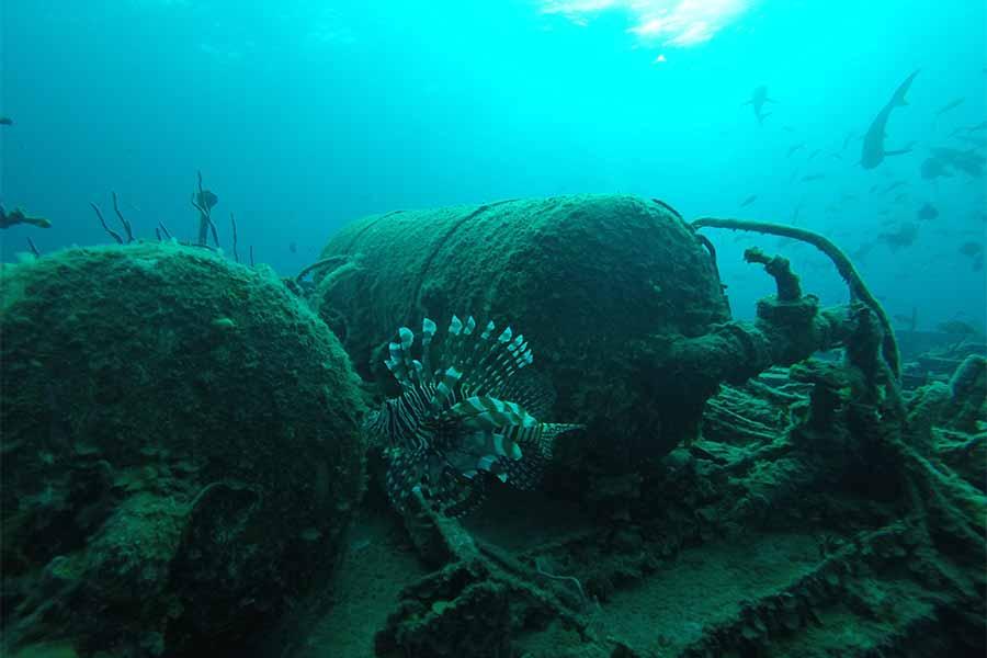 scuba-diving-scouts-gallery05.jpg