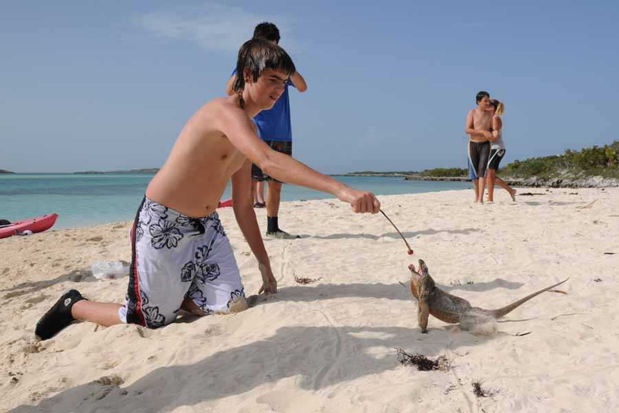 Scouts feeding iguanas on their high adventure trip to the Bahamas. on the dive liveaboard Blackbeard Cruises