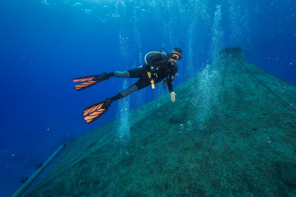 A scuba diver swimming above the Cobia Cage in Eleuthera, Bahamas.