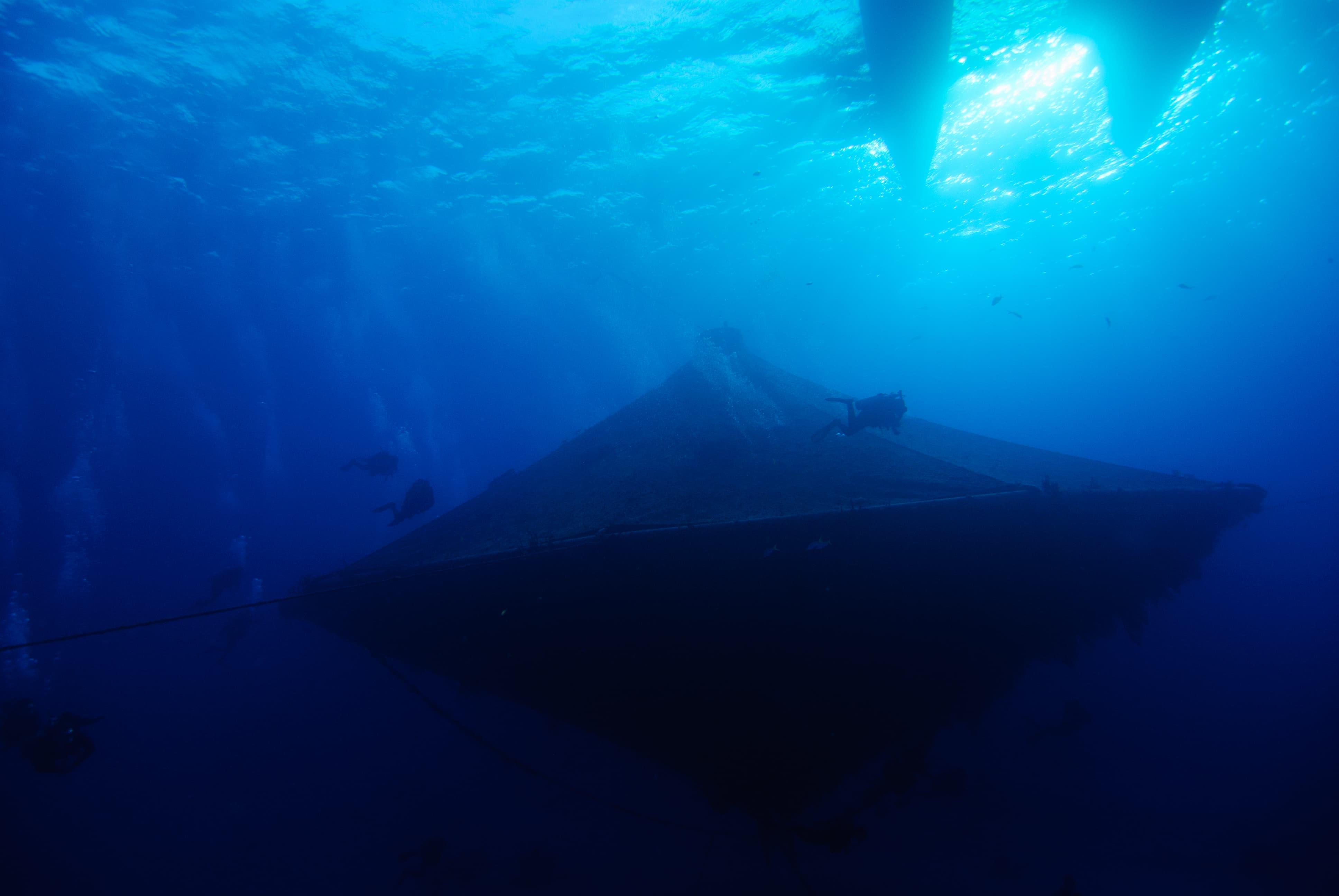Scuba Diving on the Cobia Cage, Eleuthera Bahamas
