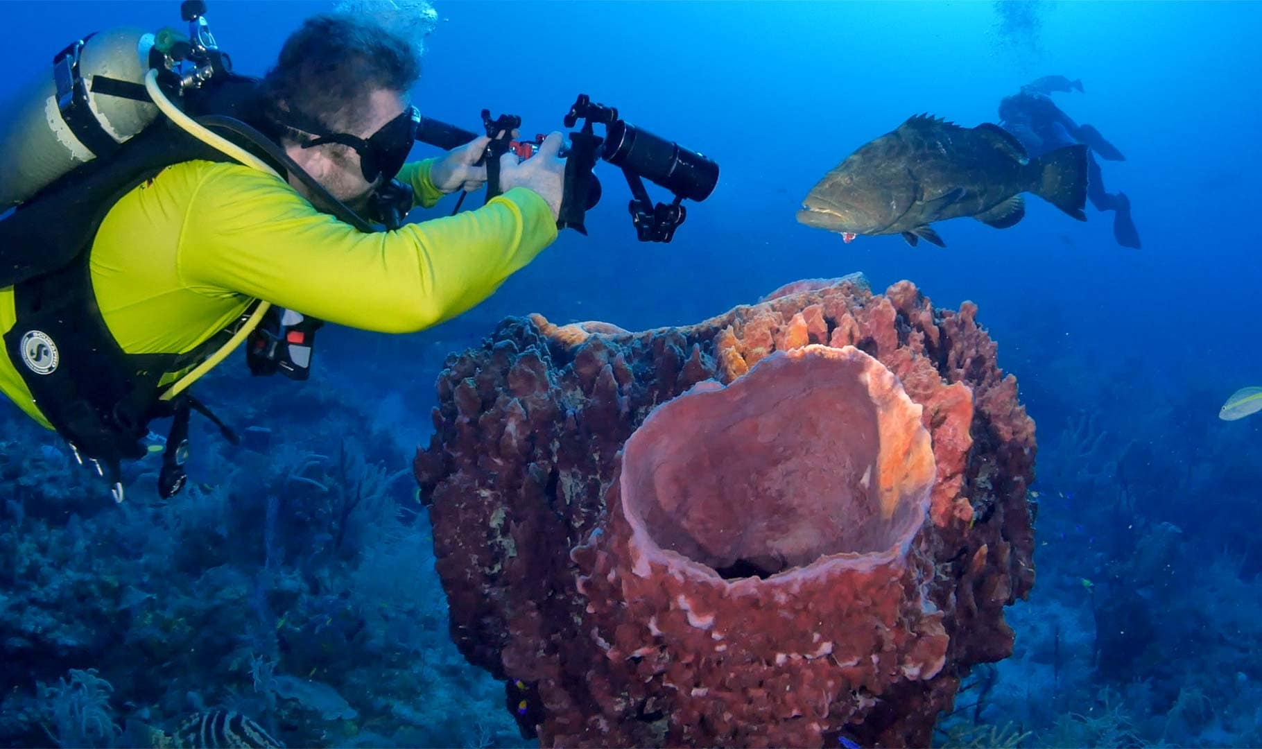 Diver off the Cuban scuba diving liveaboard taking a picture of a black grouper