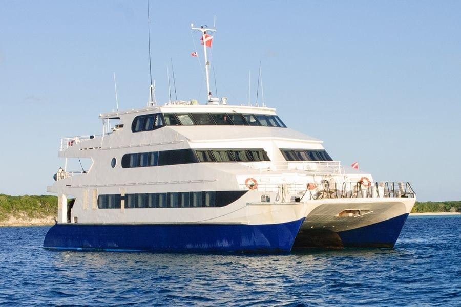 aqua-cat-vessel-01