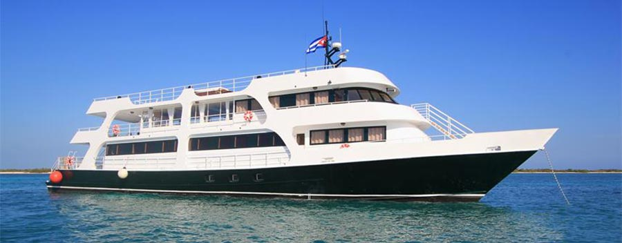 The All Star Avalon II, a 4-story dive liveaboard, showcases Cuba's Gardens of the Queen Marine Park